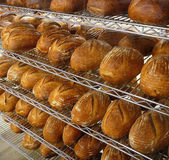 Fresh Bread in Bakery Stock Images