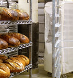 Fresh Bread in Bakery royalty free stock image