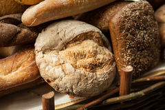 Fresh bread from the bakery. Different kinds of bread from grain Stock Image