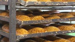 Fresh bread at the bakery. Fresh bread at a bakery plant. Many loaves of white bread lay on a tray