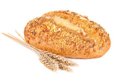 Fresh bread and bran Royalty Free Stock Image