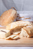 Fresh bread with a cheese Royalty Free Stock Photos