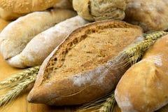 Fresh bread, closeup Stock Images