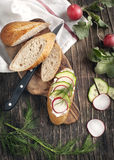 Fresh bread with Cottage cheese, radish and cucumber Royalty Free Stock Images