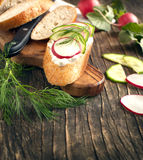 Fresh bread with Cottage cheese, radish and cucumber Royalty Free Stock Image