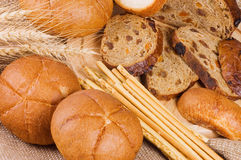 Fresh bread with ear of wheat Stock Photography