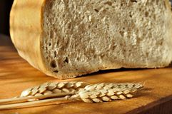 Fresh bread with ear of wheat Royalty Free Stock Photo