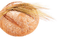 Fresh bread with ears a rye Royalty Free Stock Image