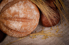 Fresh bread with ears a rye Stock Photo