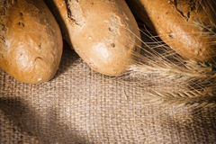 Fresh bread with ears of rye Royalty Free Stock Images