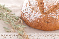 Fresh bread with ears on the table. Fresh baked bread with ears on the table Royalty Free Stock Photography