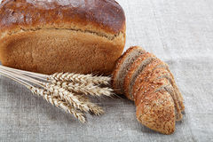 Fresh bread with ears of wheat. Fresh bread with ears of wheat on the canvas Stock Image