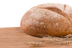 Fresh bread. Isolated on white Royalty Free Stock Photography