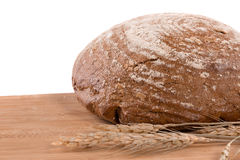 Fresh bread. Isolated on white Stock Image