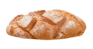 Fresh bread isolated on a white background Stock Image