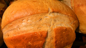 Fresh bread. Fresh loaf of bread up close Stock Images