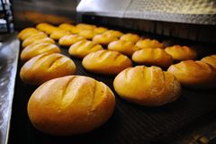 Fresh bread out of the oven Stock Images