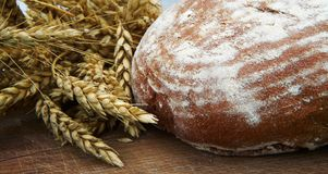 Fresh bread and ripe wheat. On the wooden board Royalty Free Stock Photography