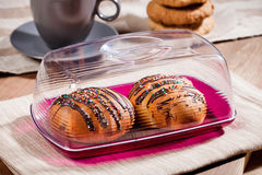 Fresh bread rolls in a plastic container Royalty Free Stock Photo