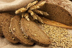 Fresh bread and rye grain Royalty Free Stock Photos