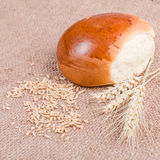 Fresh bread with wheat ears Stock Images