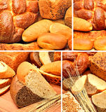 Fresh bread, wheat ears, wheat grains on the wooden background. Collage royalty free stock photo