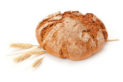 Fresh bread and wheat. Royalty Free Stock Images