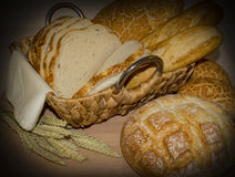 Fresh bread and Wheat Stock Images