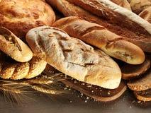Fresh bread stock photos