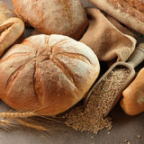 Fresh bread Royalty Free Stock Image