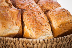 Fresh breads Stock Photography