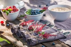 Fresh breakfast with raspberries and blueberries in garden. Session in outside Royalty Free Stock Photo