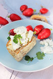 Fresh breakfast, a slice of soda bread with butter and cottage cheese and red radish. Fresh healthy breakfast, a slice of soda bread with butter and cottage Stock Photos