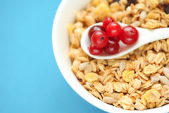 Fresh breakfast. Spoon with cranberries in bowl of muesli, selective focus Royalty Free Stock Photos