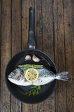 Fresh bream fish with herbs and spices on a pan Royalty Free Stock Photos