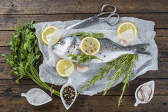 Fresh bream fish with herbs and spices ready to cook Royalty Free Stock Photos