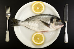 Fresh bream on a plate. Stock Photo