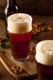 Fresh Brewed Oktoberfest Autumn Ale Stock Image