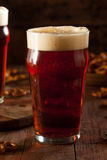 Fresh Brewed Oktoberfest Autumn Ale Stock Photography