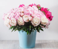 fresh bright blooming peonies flowers with dew drops on petals. white and pink bud. blue bowl bucket Royalty Free Stock Photos