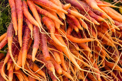 Fresh carrots at the market Royalty Free Stock Photography