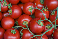 Fresh Bright Red Cherry Tomatoes Royalty Free Stock Image