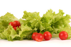 Fresh bright vegetables Royalty Free Stock Photos