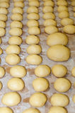 Fresh brioche dough in a bakery. Workhop Royalty Free Stock Images