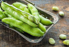 Fresh broad bean pods - closeup with selective focus royalty free stock image