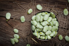 Fresh broad beans Royalty Free Stock Images