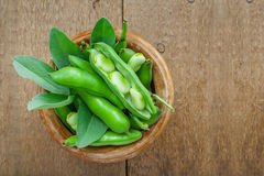 Fresh broad beans. Fresh green broad beans in a bowl. Fresh raw vegetables on a wooden table. Ingredients healthy vegetarian food Stock Photography