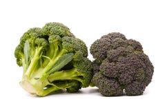 Fresh broccoli Stock Photography