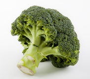Fresh broccoli. Made with the shadow like a small tree Stock Photo