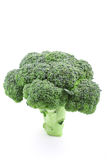 Fresh broccoli. Fresh green broccoli isolated on white Stock Photos